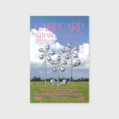 STEEL FLOWER-PINK(엽서)