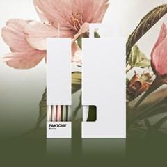 팬톤삭스 체리블라썸 Cherry Blossom 5종 세트