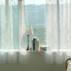 해리스 가든 자수 레이스 아일렛커튼 창문용 260x170