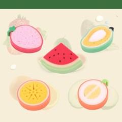 과일수세미 5종 깜찍상큼 과일수세미