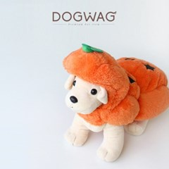 도그웨그 호박 코스튬 강아지 할로윈 코스프레 고양이 옷