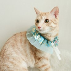 개달당 추석 설날 강아지 고양이 한복케이프 & 머리핀 set