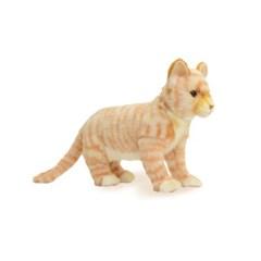 7230 고양이갈색 동물인형/30cm.L