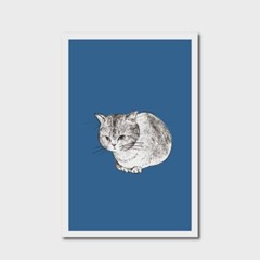 고양이 엽서 블루