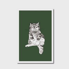 고양이 엽서 카키