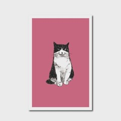 고양이 엽서 핑크
