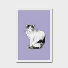 고양이 엽서 라벤더
