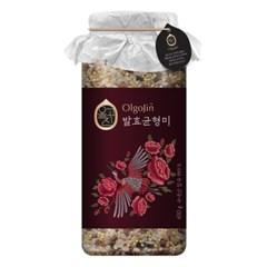 올고진 발효 혼합잡곡 균형미 650g(백미 현미 흑미 기장 적미)