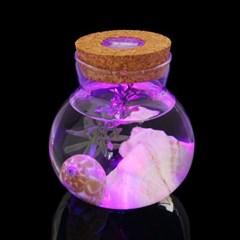 마리모 키우기 LED 유리병 수경 반려식물 유리공병