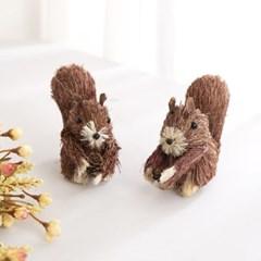 솔방울 다람쥐 1P