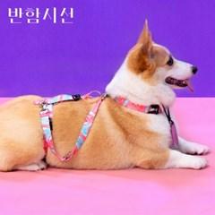 반함시선 두줄하네스 행동교정 산책훈련 강아지 하네스 가슴줄 목줄