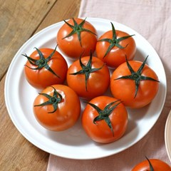 스테비아 토마토(단마토) 1kg*2팩