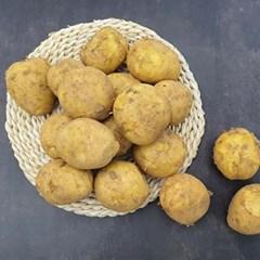 [남도장터]남도사랑 포슬포슬 햇 수미 감자 5kg (대)