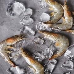[남도장터]녹동수산 싱싱한 국내산 활 왕새우 1kg (35미내외)