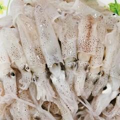 [남도장터]올바른 남해안 꼴뚜기 250g (횟감.숙회)