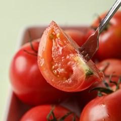 [남도장터]푸르름 스테비아 완숙토마토 단마토 2kg (1kgx2팩)