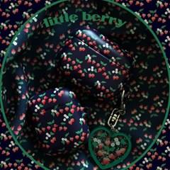 [뮤즈무드] little berry airpods case (하드에어팟케이스)