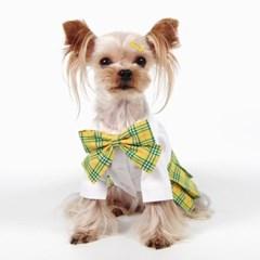 패션펫플 강아지 예고 스타일 교복 하이틴 스쿨룩 여아용