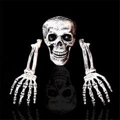 할로윈 입체 해골 모형 가짜 뼈 소품 방탈출 장식 H