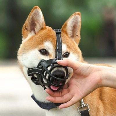 개 강아지 블랙 입마개 소형견 중형견 대형견