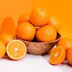 신선플레이 미국산 발렌시아 오렌지 16kg 72과