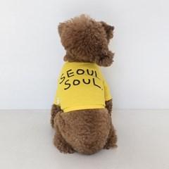 Seoul Soul Tee(Yellow)