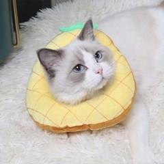 고양이 강아지 쿠션 넥카라 그루밍 방지 5종 모음전