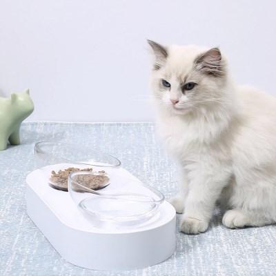 굿초이스 척추 보호 고양이/강아지 밥그릇