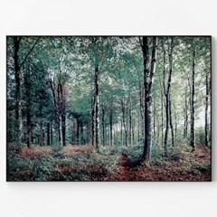 메탈 자연 포스터 자작나무 숲 액자