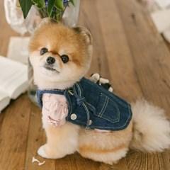 데님 멜빵 강아지원피스 포쉬독 봄 가을