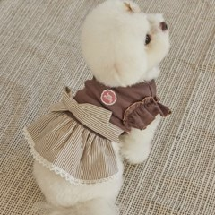 소프트 스트라이프 드레스