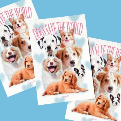Dogs Postcard