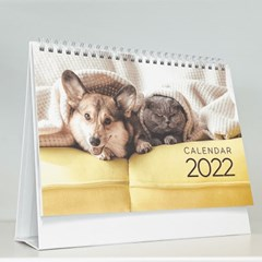 2022 강아지&고양이 탁상 달력
