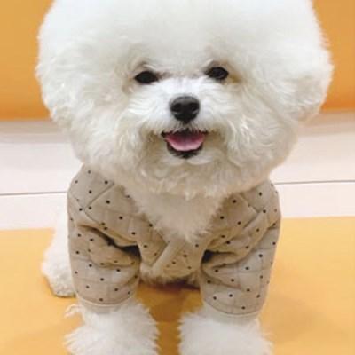 강아지옷 티셔츠 실내복 애견의류 미니별 누빔자켓