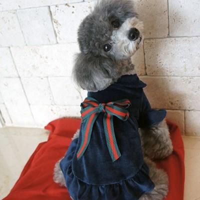 강아지옷 원피스 티셔츠 실내복 애견의류 리본 골덴