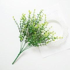 내추럴 유칼립투스 부쉬