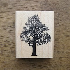[나무&잎]나무-1