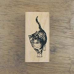 [동물&곤충]나는 고양이로소이다