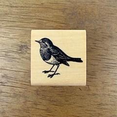 [동물]숲 속의 새
