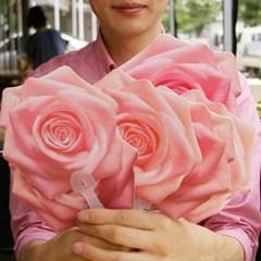 장미부채_핑크