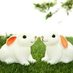 Baby Bunny (아기토끼 LED램프)