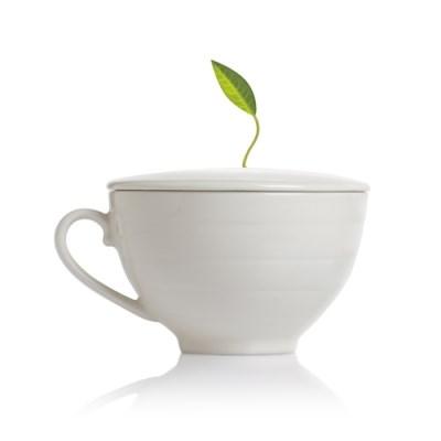 시그니처 카페 컵