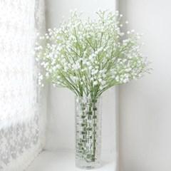 스위티 안개꽃