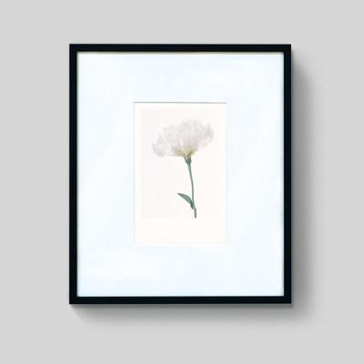 white flower frame