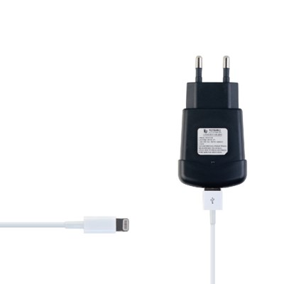 8PIN USB 휴대용 고속 충전기 (2A)
