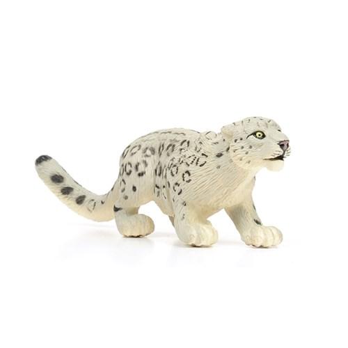 237529 설표 Snow Leopard_(546788)