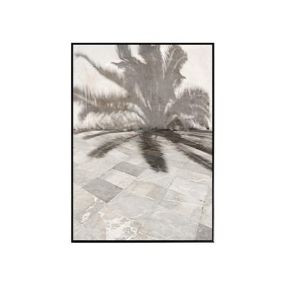 에포크 -팜 섀도우(50x70cm) framed
