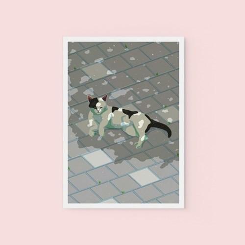 고양이 - POSTCARD