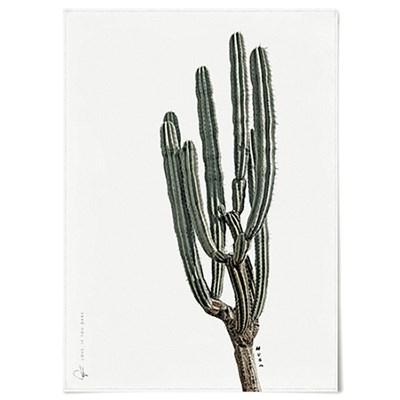 패브릭 천 포스터 F021 식물 선인장 허그미