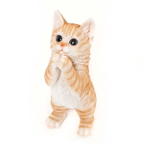 초롱초롱 갈색고양이 장식